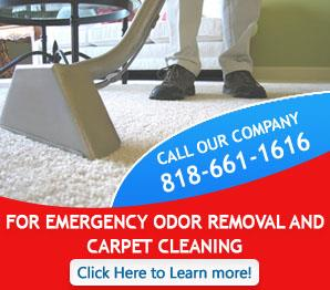 Carpet Cleaning Panorama City, CA | 818-661-1616 | Fast Response